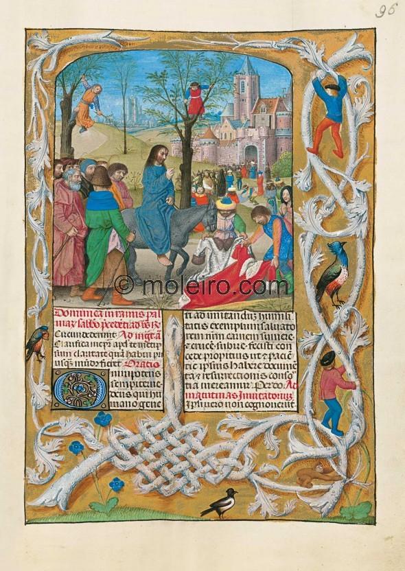 f. 96r, L'entrata di Gesù a Gerusalemme