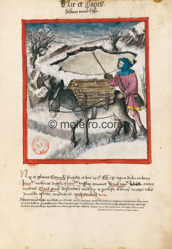 f. 87r, Schnee und Eis. Snow and ice. Nature: cold and wet in the third degree. Optimum: from good, fresh water. Benefit: they i...