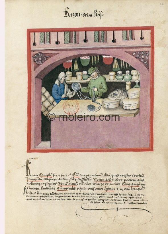 f. 44r, Rice. Rice. Nature: cold and dry in the second degree. Optimum: pearl rice that smells when cooked. Benefit: useful for ...