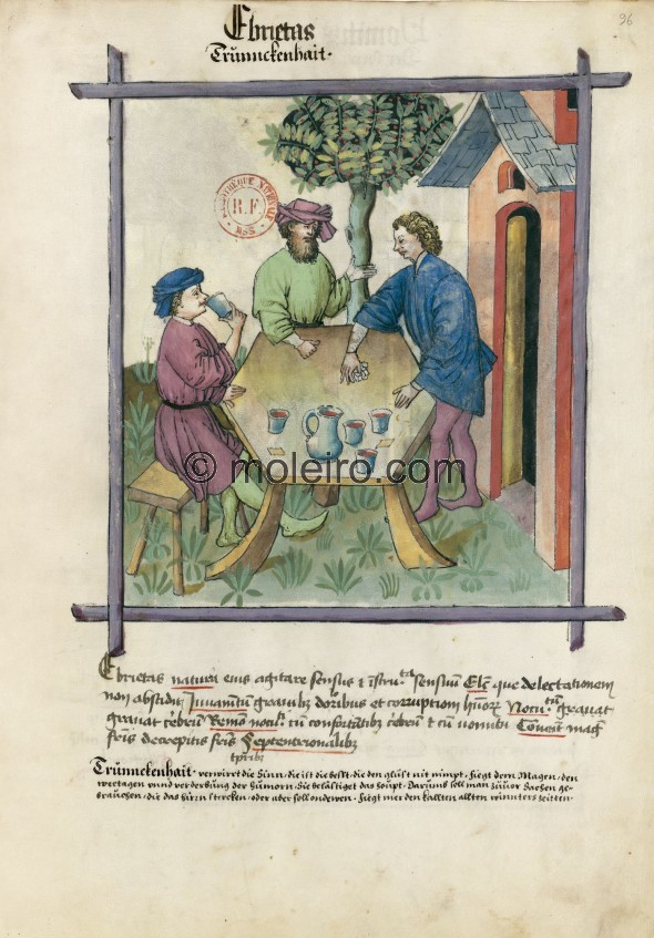 f. 96r, Trunkenheit. Drunkenness. Its nature is an alteration of the senses and the sensorial organs. Optimum: the type that doe...
