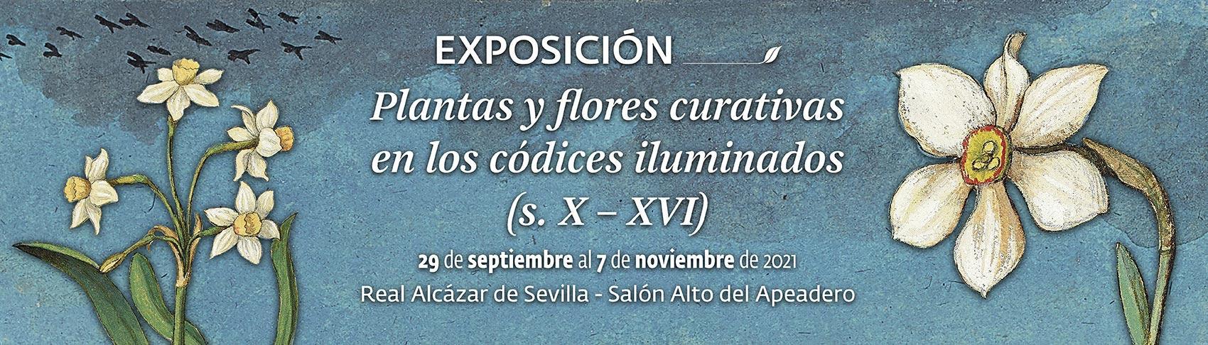 Exposición Plantas y flores curativas en los códices iluminados, s. X a XVI. 29 de septiembre al 7 de noviembre de 2021.